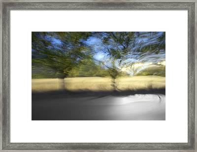 Asphalt Framed Print by Daniel Furon