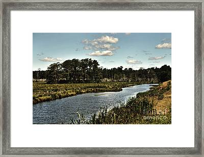 Assateague Island - A Nature Preserve Framed Print by Gerlinde Keating - Galleria GK Keating Associates Inc