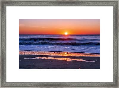 Assateague Sunrise - Ocean - Virginia Framed Print by Shara Lee