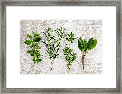 Assorted Fresh Herbs Framed Print by Nailia Schwarz