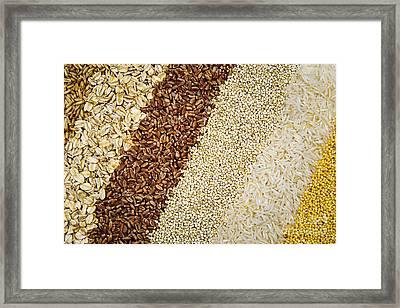 Assorted Grains Framed Print by Elena Elisseeva