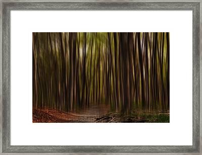 Astray- Walking Path Art Framed Print by Lourry Legarde