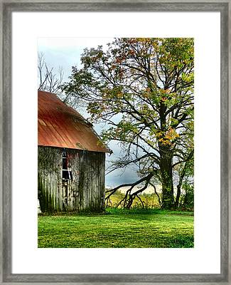At The Barn Framed Print by Julie Dant