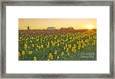 At The Crack Of Dawn Framed Print by Nick  Boren