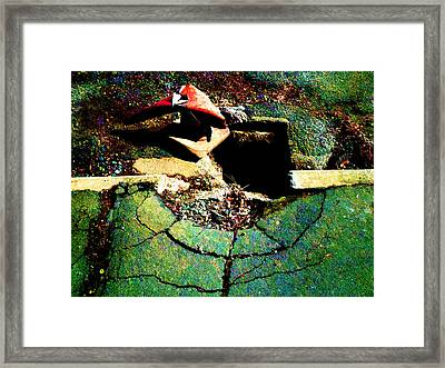 At The End Of The Rainbow Framed Print by Steve Taylor