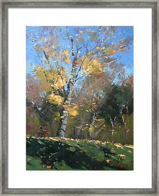 At The Park Framed Print by Ylli Haruni