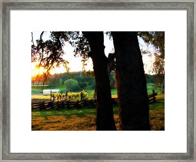 At The Ranch Framed Print by Rich Ackerman