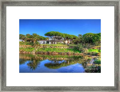 Atlantic Pines Framed Print by English Landscapes