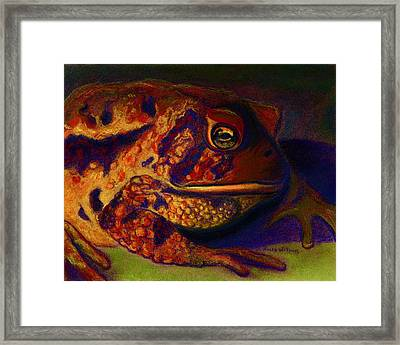 Atoadment Framed Print by D Renee Wilson