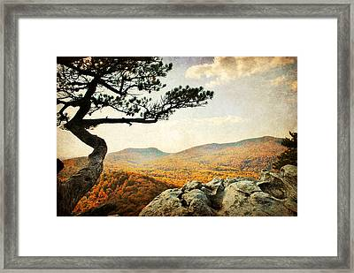 Atop The Rock Framed Print by Kelly Nowak
