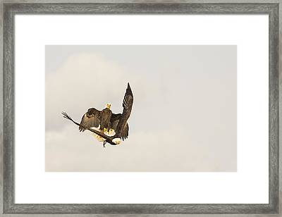 Attempted In Flight Robbery Framed Print by Tim Grams