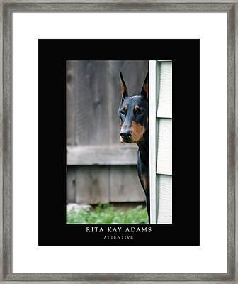 Attentive Framed Print by Rita Kay Adams
