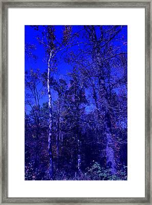 Attitude Blue Framed Print by Nina Fosdick