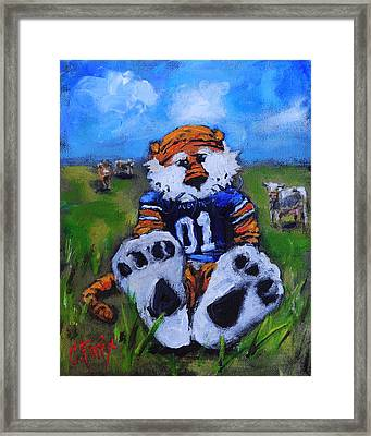 Aubie With The Cows Framed Print by Carole Foret