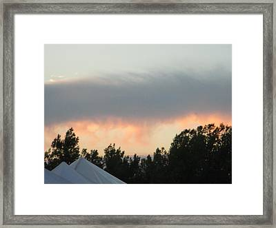 Audience In The Sky Framed Print by Suzanne Perry