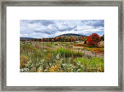 August Fall Colors Flowers And Trees I - West Virginia Framed Print by Dan Carmichael