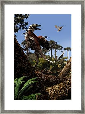 Aurornis Framed Print by Jaime Chirinos