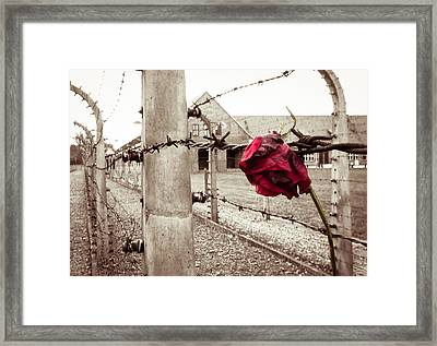 Auschwitz Framed Print by Ian Hufton