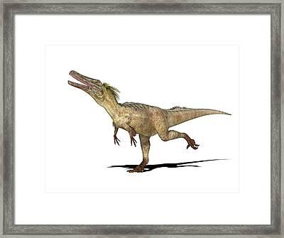 Austroraptor Dinosaur Framed Print by Friedrich Saurer