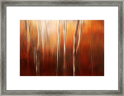 Autumn Abstract Framed Print by Magda  Bognar