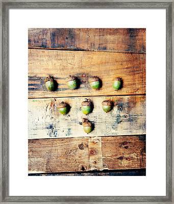 Autumn Acorns Framed Print by Kim Fearheiley