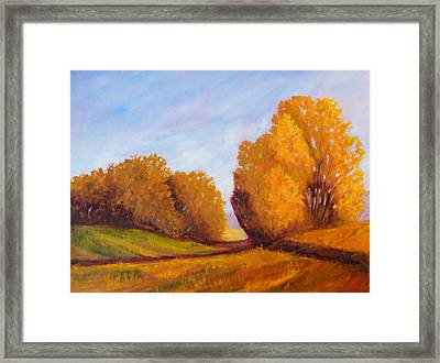 Autumn Afternoon Framed Print by Nancy Merkle