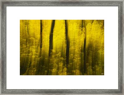 Autumn Apparitions Framed Print by Peter Coskun
