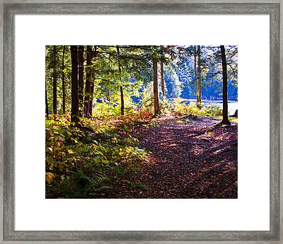 Autumn At Cary Lake II Framed Print by David Patterson