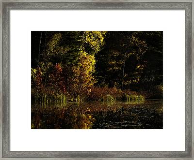 Autumn At It's Finest Framed Print by Thomas Young
