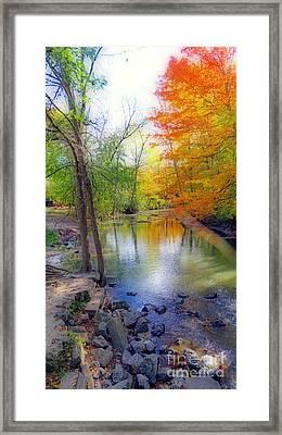 Autumn At Petrifying Springs Framed Print by Kay Novy