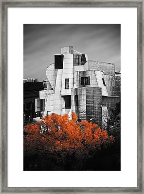 autumn at the Weisman Framed Print by Matthew Blum