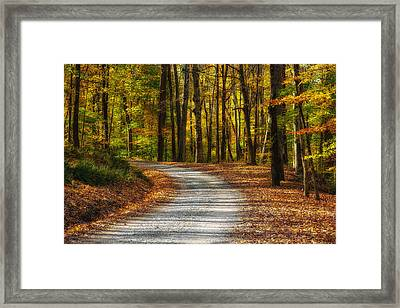 Autumn Beauty Framed Print by Dale Kincaid