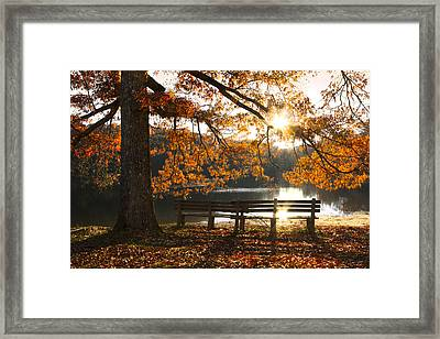 Autumn Beauty Framed Print by Debra and Dave Vanderlaan