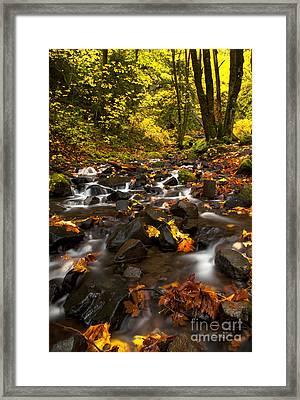 Autumn Breeze Framed Print by Mike  Dawson