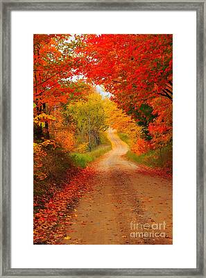 Autumn Cameo Framed Print by Terri Gostola