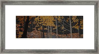 Autumn Carpet Framed Print by Anita Jacques