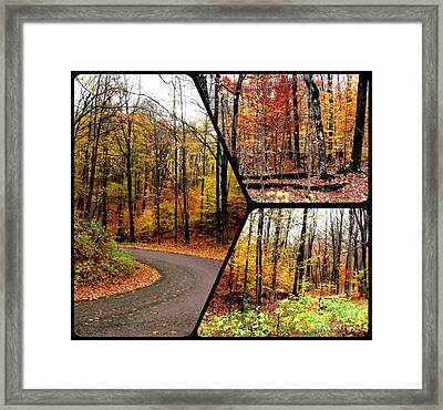 Autumn Collage Framed Print by Gail Matthews