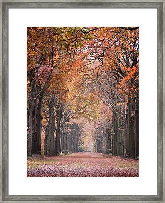 Autumn - Colorful Red Green Orange Nature Landscape Fine Art Photography Framed Print by Artecco Fine Art Photography