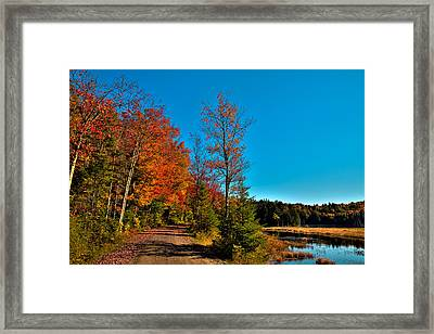 Autumn Colors At Cary Lake Framed Print by David Patterson