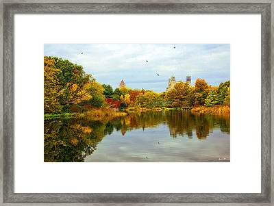 Autumn Colors - Nyc Framed Print by Madeline Ellis