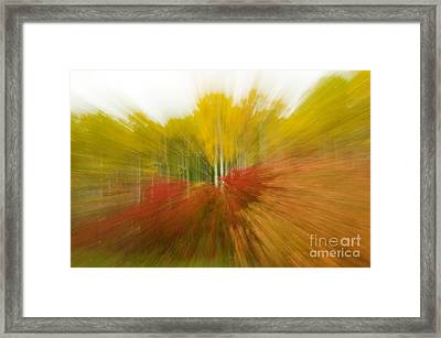 Autumn Colors Framed Print by Vivian Christopher