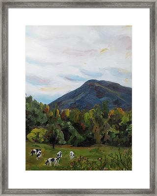 Autumn Cows Framed Print by Jaymi Krystowiak