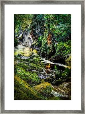 Autumn Creek Framed Print by Adrian Evans