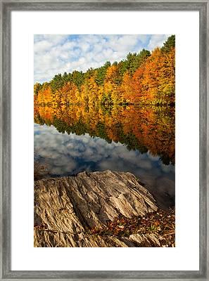 Autumn Day Framed Print by Karol Livote
