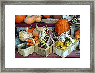 Autumn Display Framed Print by Frozen in Time Fine Art Photography