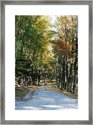 Autumn Drive Framed Print by Barbara Bardzik