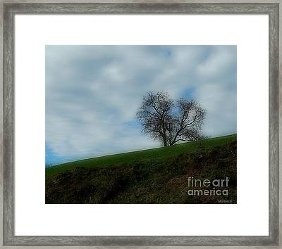 Autumn Etude Framed Print by Marija Djedovic