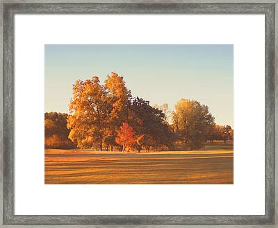 Autumn Evening On The Golf Course Framed Print by Ann Powell