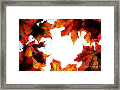Autumn Fire Framed Print by Martin Howard