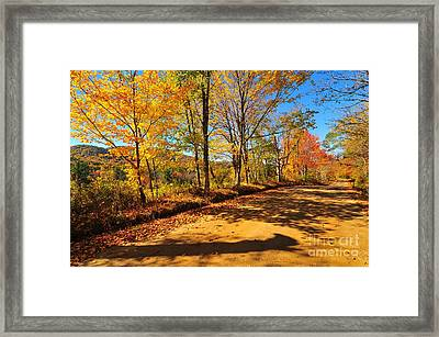 Autumn Flowers Framed Print by Catherine Reusch  Daley